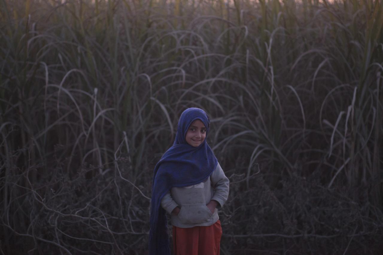 CURRENT: Asma 2011