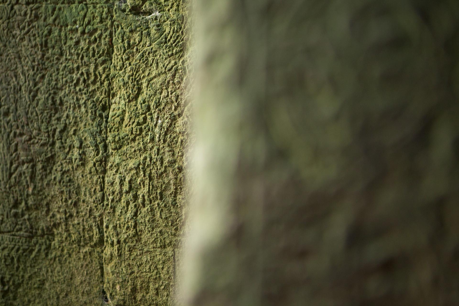 Angkor 08
